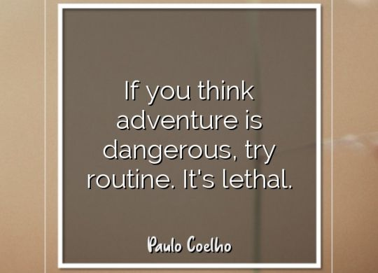 if-you-think-adventure-is-dangerous-try-routine-its-lethal-paulo-coelho4.jpg