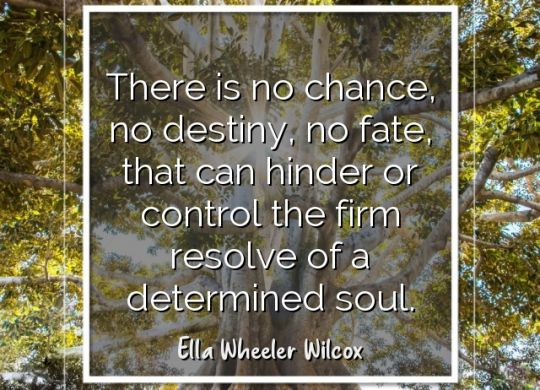 there-is-no-chance-no-destiny-no-fate-that-can-hinder-or-control-the-firm-resolve-of-a-determined-soul-ella-wheeler-wilcox9.jpg